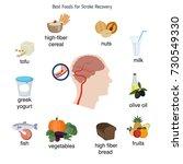 foods infographics. best foods... | Shutterstock .eps vector #730549330