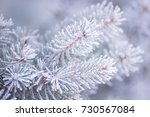 winter and christmas background....   Shutterstock . vector #730567084
