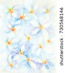 watercolor painting. soft... | Shutterstock . vector #730568146