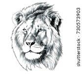 sketch of lion head vector... | Shutterstock .eps vector #730573903
