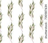 green watercolor eucalyptus... | Shutterstock . vector #730587634