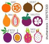 colorful brush grunge fruits...   Shutterstock .eps vector #730757320