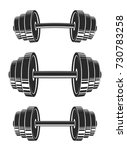 dumbbells set   stock vector. | Shutterstock .eps vector #730783258