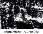 white powder on a black... | Shutterstock . vector #730786240