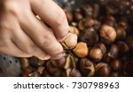 Fried Chestnut In Hand