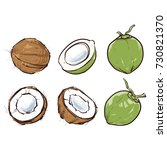 coconut isolated on white... | Shutterstock .eps vector #730821370