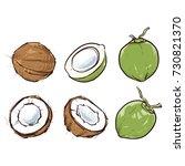 coconut isolated on white... | Shutterstock .eps vector #730821370