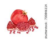 garnet with grains... | Shutterstock .eps vector #730846114