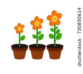 plant growth stages symbol....