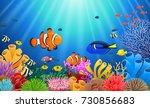 clown fish under the sea.  | Shutterstock . vector #730856683