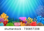 corals with underwater view... | Shutterstock .eps vector #730857208