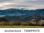 Grassy Meadow In Mountains Wit...