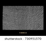 array with dynamic particles.... | Shutterstock .eps vector #730951570