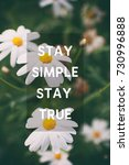 inspirational and motivational... | Shutterstock . vector #730996888