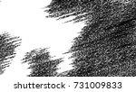 black and white grunge pattern... | Shutterstock . vector #731009833