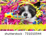happy poodle dog having a party ... | Shutterstock . vector #731010544
