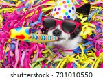 poodle dog having a party with... | Shutterstock . vector #731010550
