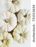 White Pumpkins. Fall Autumn...