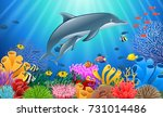 cartoon dolphin with coral reef ... | Shutterstock .eps vector #731014486