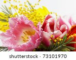 Pink And Yellow Tulips  Mimosas