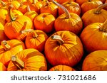 A Truckload Of Ripe Pumpkins On ...