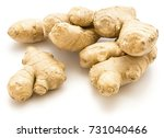 ginger rhizome isolated on... | Shutterstock . vector #731040466