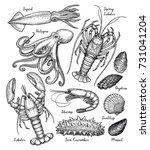 sea animals big set. ink sketch ... | Shutterstock .eps vector #731041204