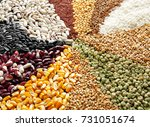 different types of cereals and... | Shutterstock . vector #731051674