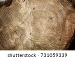 Natural Old Wood Texture Of...