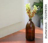 Small photo of Amber Glass Bottle Vase with Green-Red Siam Tulip or Summer Tulip Flowers on Wooden Table