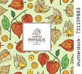 background with physalis  plant ... | Shutterstock .eps vector #731109883
