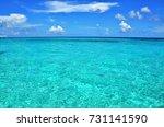 georgetown  grand cayman  ... | Shutterstock . vector #731141590