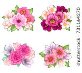 flower set | Shutterstock . vector #731164270