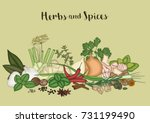 vector illustration of herbs... | Shutterstock .eps vector #731199490