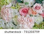 flower background . rose...   Shutterstock . vector #731203759
