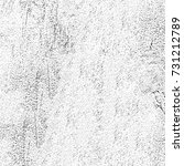 grunge texture black and white. ... | Shutterstock . vector #731212789