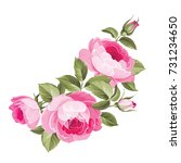 the rose elegant card. a spring ... | Shutterstock .eps vector #731234650
