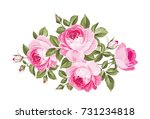 bouquet of roses iolated on... | Shutterstock .eps vector #731234818