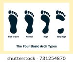 the four basic arch types. set... | Shutterstock .eps vector #731254870