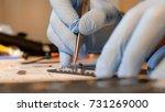 professional technician hands... | Shutterstock . vector #731269000