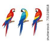 parrot set. isolated on white... | Shutterstock .eps vector #731318818
