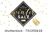winter shopping sale flyer... | Shutterstock .eps vector #731350618