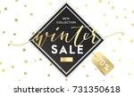 winter shopping sale flyer... | Shutterstock .eps vector #731350618