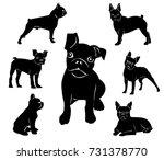 silhouette of boston terrier.... | Shutterstock .eps vector #731378770