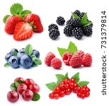 set of berry on white closeup... | Shutterstock . vector #731379814