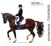 equestrian sport. horsewoman... | Shutterstock .eps vector #731405833