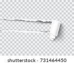 vector transparent ripped paper ... | Shutterstock .eps vector #731464450