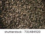 sunflower seeds seeds