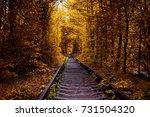 love tunnel in autumn | Shutterstock . vector #731504320
