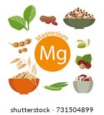 products rich with magnesium.... | Shutterstock . vector #731504899